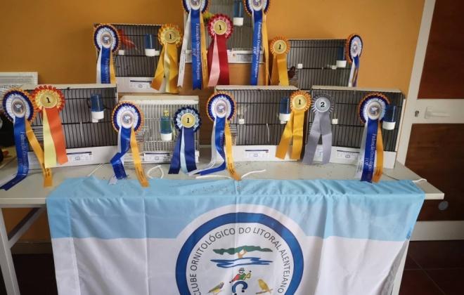 Vila Nova de Santo André recebeu 9.ª Exposição de Aves do Litoral Alentejano