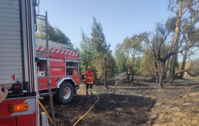 Sines e Santiago com plano para Defesa da Floresta contra Incêndios