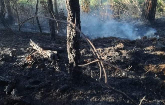 Bombeiros combateram incêndio na Fonte Mouro