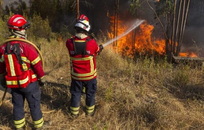 Governo aprova dispensa de serviço para bombeiros voluntários