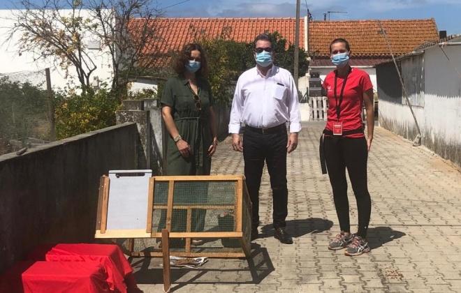 Município de Alcácer do Sal avança com controlo populacional de gatos errantes