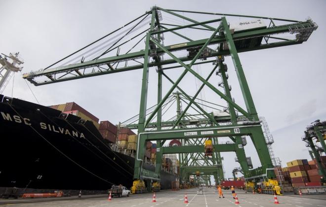 Sindicato XXI quer trabalhadores portuários incluídos no Plano de Vacinação