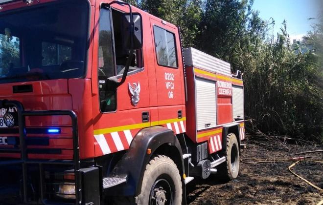 Incêndio consome área agrícola em Almograve