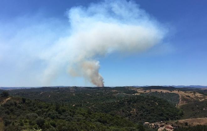 Incêndio em Relíquias mobiliza 101 operacionais e 5 meios aéreos