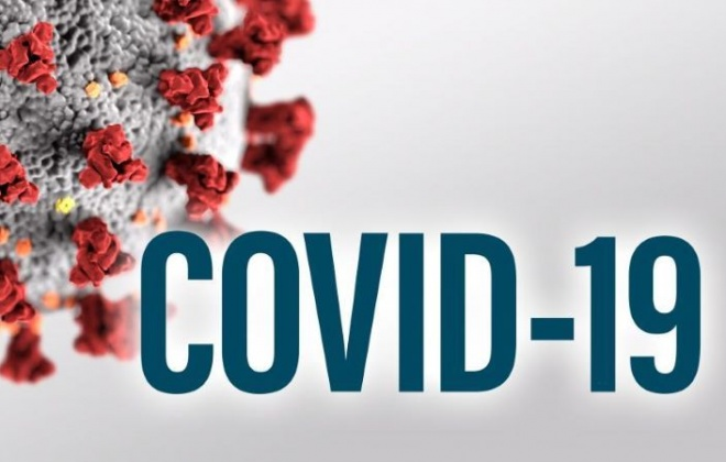 COVID-19: 2041 infetados em dia sem mortes por Covid-19 em Portugal