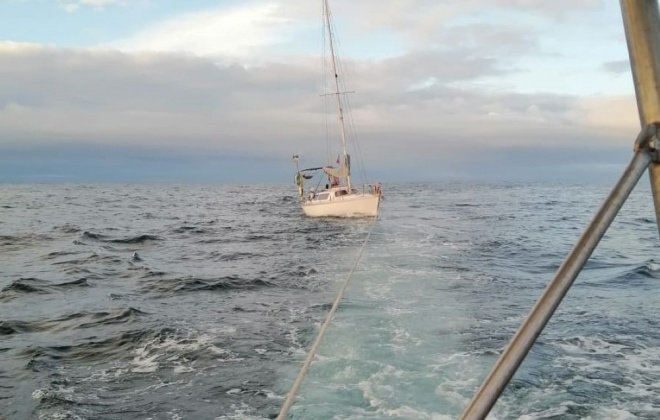 Veleiro francês foi abalroada por orcas ao largo de Sines